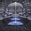 dmt-parallel-worlds-brain