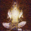meditationsham