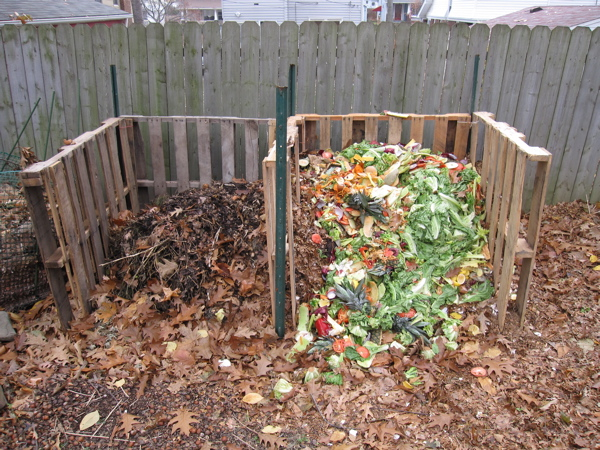 12 Things Not To Put In Your Compost Pile The Houston