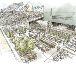 Field of greens: Edible garden coming to San Francisco's AT&T Park
