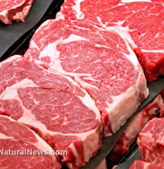Scientists say high-protein diets increase risk of kidney problems