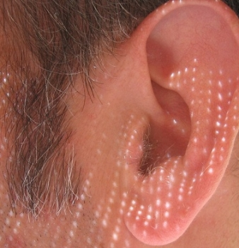 Ears Could Make Better Unique IDs Than Fingerprints