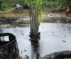 Chevron Defends Its RICO Victory in the Epic Ecuadorian Oil Pollution Case