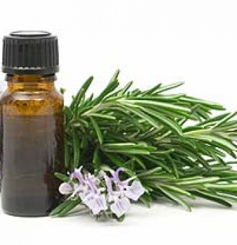 Essential Oils Oregano, Rosemary, Effective in Ringworm Treatment