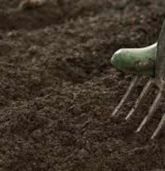 Houston: Time to begin preparing soil for spring gardening