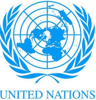 "UN Hiring Peacekeepers to ""Disarm"" American Citizens?"